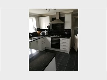 EasyRoommate UK - Nice size double room near the University & Tesco, Guildford - £500 pcm