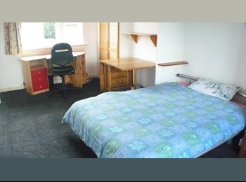 EasyRoommate UK - Large double room near UoS, Research Park and Tesco. fast WiFi, low bills, Guildford - £600 pcm