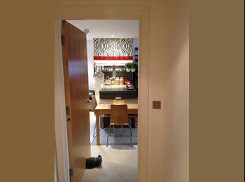 EasyRoommate UK - Designer Flat In Manchester City Centre, Castlefield - £850 pcm