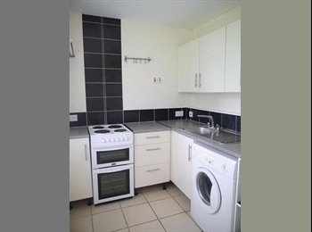 EasyRoommate UK - Lovely one bed flat in convenient area, Cowgate - £450 pcm