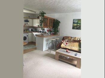 EasyRoommate UK - Offer a single room for rent, Oxford - £480 pcm