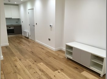 EasyRoommate UK - Brand New Quality Contemporary Development Lift Video Entry 1 Bed Flat Store Room VeryNearTubeShops , Lampton - £1,000 pcm
