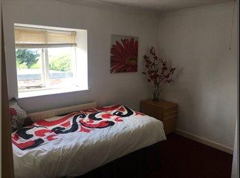 EasyRoommate UK - Double Rooms in Peterborough from £205 PE6 , Peterborough - £205 pcm