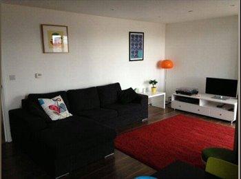 EasyRoommate UK - Double room in spacious modern flat in East London, Poplar - £900 pcm