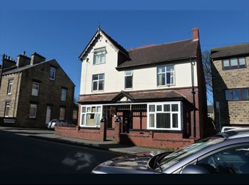 EasyRoommate UK - Private rooms to rent close to Barnsley town centre, Barnsley - £300 pcm