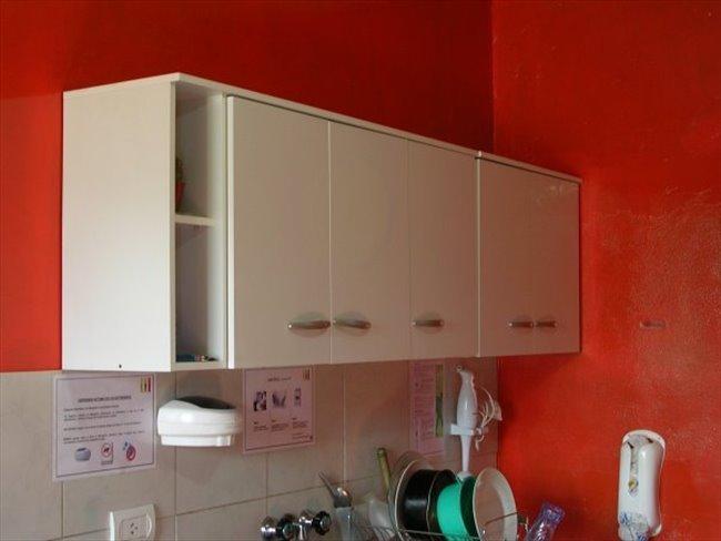 Habitacion en alquiler en Rosario - Resid. Estudiantil | CompartoDepto - Image 3