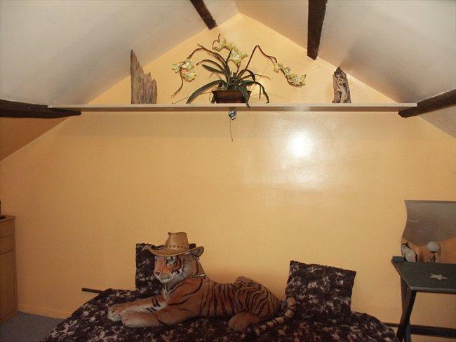 Colocation pontoise chambre dans maison avec jardin for Cherche jardin a entretenir