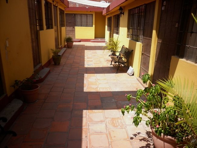 Cuarto en renta en Puebla - Estancia exclusiva a estudiantes UPAEP,  ISU o IEU. | CompartoDepa - Image 3