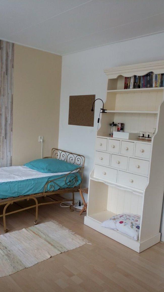 Kamers te huur in Alkmaar - Nice room 4 rent/Ruime Kamer te huur DE RIJP - Alkmaar | EasyKamer - Image 1