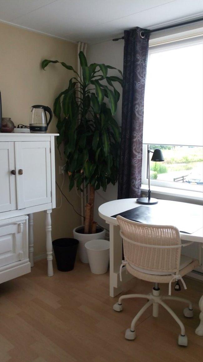 Kamers te huur in Alkmaar - Nice room 4 rent/Ruime Kamer te huur DE RIJP - Alkmaar | EasyKamer - Image 4