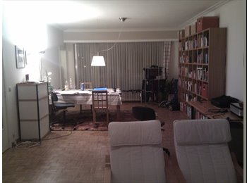 Appartager BE - Share a room in a spacious and clean apartment (central location), Anvers - 350 € pm
