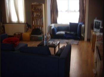 Appartager BE - Colocation dans un triplex spacieux à deux pas des institutions européennes, Etterbeek - 450 € pm
