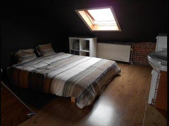 Appartager BE - Spacieuse chambre au centre ville, Bruxelles - 525 € pm