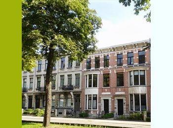 Appartager BE - charmant gemeenschapshuis/collocation/cohousing, Anvers - 350 € pm