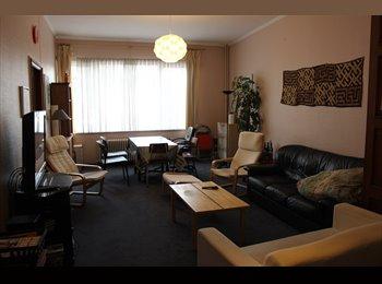 Appartager BE - Coloc sympa de jeunes travailleurs bien située !, Namur - 300 € pm