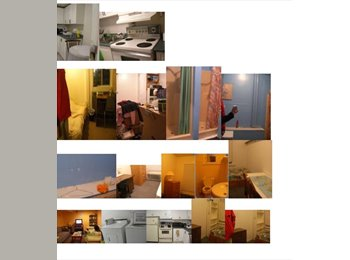 EasyRoommate CA - Rooms for Ladies  Downtown, Ottawa - $425 pcm