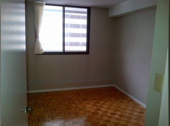 EasyRoommate CA - room for rent (yonge and college), Toronto - $900 pcm