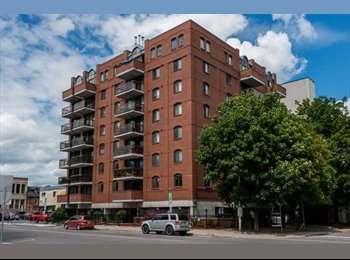 EasyRoommate CA - Fully Furnished Room for Rent in the Byward Market  , Ottawa - $1,300 pcm
