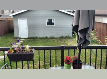 EasyRoommate CA - Room for rent in Saskatoon by the Airport, Saskatoon - $500 pcm