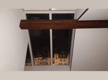 EasyWG CH - Neuchâtel-Centre: Beau duplex mansardé 2 pièces avec balcon et vue sur château, Neuchâtel - 1'450 CHF / Mois