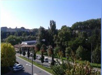 EasyPiso ES - ALQUILO 2 HABITACIONES, Pamplona - 250 € por mes