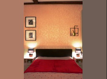 Appartager FR - STRASBOURG Centre Petite France/Fac Médecine - Chambre chez l'habitant sur cour intérieure calme, Strasbourg - 450 € /Mois