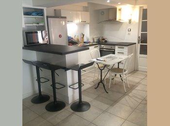 Appartager FR - Une place libre en coloc à quatre centre Lyon, Lyon - 530 € /Mois