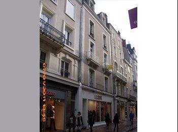Appartager FR - chambre à louer, Angers - 330 € /Mois