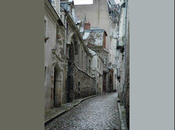 Appartager FR - Appartement T3  centre ville, Angers - 370 € /Mois