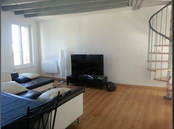 Appartager FR - Chambre meublée Thionville zone piétonne, Thionville - 480 € /Mois