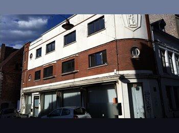 Appartager FR - 1 chambre libre dans appartement pour 1 étudiant(e) RUBIKA, Valenciennes - 330 € /Mois