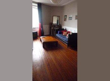 Appartager FR - appartement à 2mn du centre ville, Nancy - 500 € /Mois