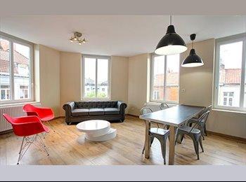 Appartager FR - Magnifique chambre avec SBD et WC privés, Lille - 475 € /Mois
