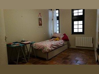 Appartager FR - Colocation grand appartement centre historique , Albi - 345 € /Mois