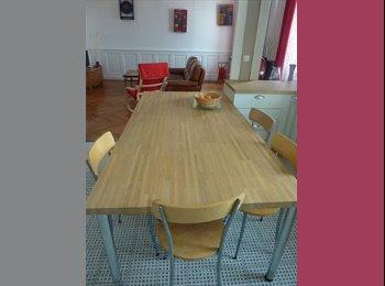 Appartager FR - Colocation dans magnifique appartement, Villeurbanne - 450 € /Mois