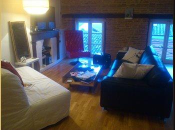 Appartager FR - Chambre aux Carmes (Mi Aout), Toulouse - 460 € /Mois