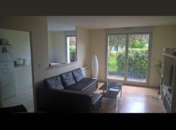 Appartager FR - Belle colocation hyper centre de Reims, Reims - 512 € /Mois