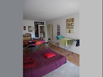 Appartager FR - Chambre dans une colocation sur Angers, Angers - 250 € /Mois