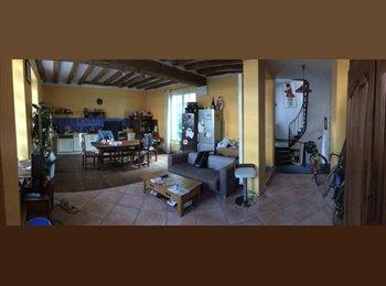Appartager FR - Recherche colocataire, Angers - 458 € /Mois