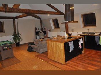 Appartager FR - Colocation Rieux-en-Cambrésis (Proche Cambrai / Caudry / Valenciennes ..), Avesnes-les-Aubert - 350 € /Mois