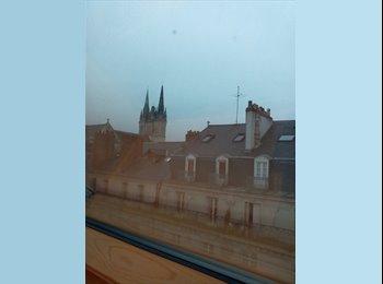 Appartager FR - Colocation sous les toits d' Angers- place du Ralliement, Angers - 322 € /Mois