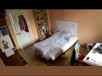 Appartager FR - Chambre sympa & agréable à sous-louer fin juillet-septembre, Strasbourg - 390 € /Mois