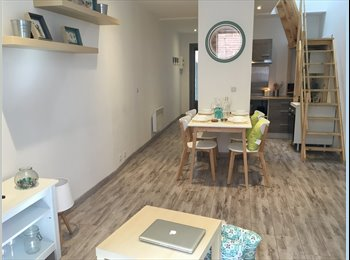 Appartager FR - Colocation 2 chambres Hyper centre, Albi - 500 € /Mois