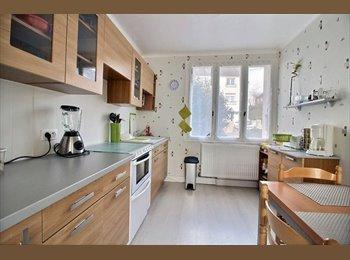 Appartager FR - Belle maison meublée proche de l'IUT, Quimper - 280 € /Mois