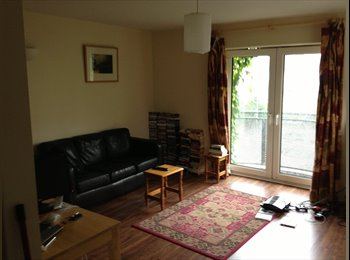 EasyRoommate IE - Large Double room in Cork city for rent, Cork - €450 pcm