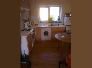 EasyRoommate IE - looking for house mate -June to September - Possibly longer, Cork - €400 pcm