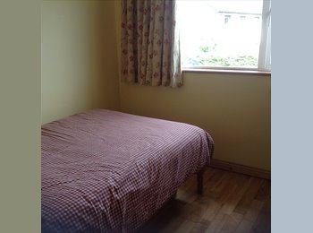 EasyRoommate IE - Rooms available, Galway - €450 pcm