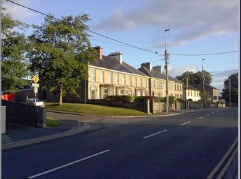 EasyRoommate IE - Accommodation for Rent, Galway - €650 pcm