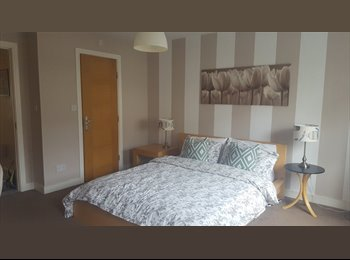 EasyRoommate IE - Large double room with ensuite., Dublin - €500 pcm