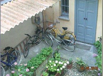 EasyStanza IT - AFFITTASI A PAVIA CENTRO - CAMERA IN TRILOCALE, Pavia - € 400 al mese